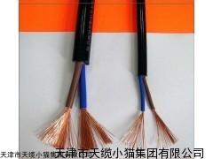 天津小猫电缆ZA-RVV机房专用阻燃屏蔽软电缆