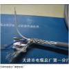 RS485 2*2*1.5双绞屏蔽电缆