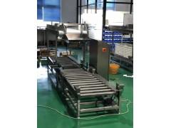 DT 皮带传输碳钢滚筒秤
