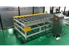 DT 生产线输送辊筒秤