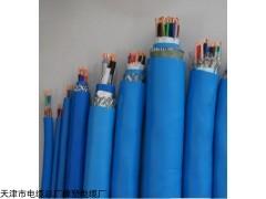 ZR-DJYPVR10*3*1.5计算机电缆标准