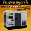 大泽动力 温州TO42000ET发电机40千瓦杨景景