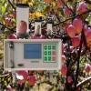 DP-GS3 果蔬呼吸测定仪