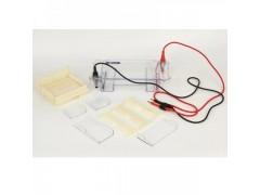 KEEBIO-HE120多功能水平电泳槽 琼脂糖电泳装置