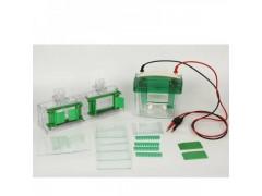 KEEBIO-VE180微型垂直电泳槽 核酸蛋白质分析电泳仪